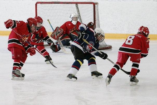 Доклад о хоккее для детей 7080